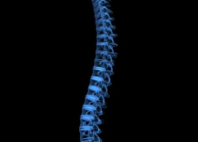 x-ray human spine